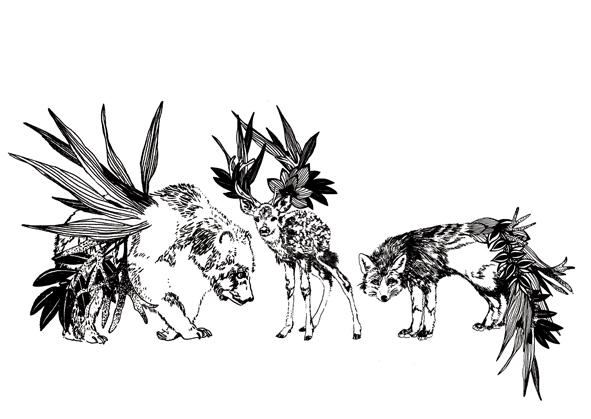 animauxflorauxvisuel